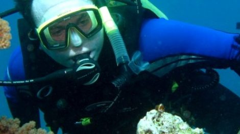 Gold Coast Scuba Diving