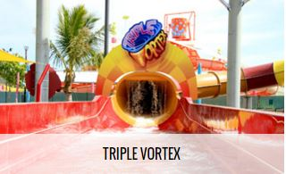 Triple Vortex