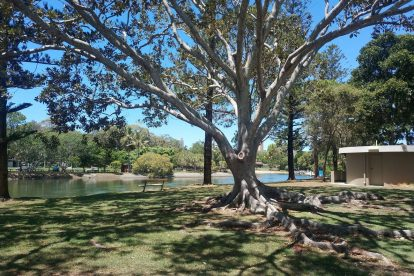 Broadbeach Waters-14