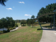 Pacific Pines-07