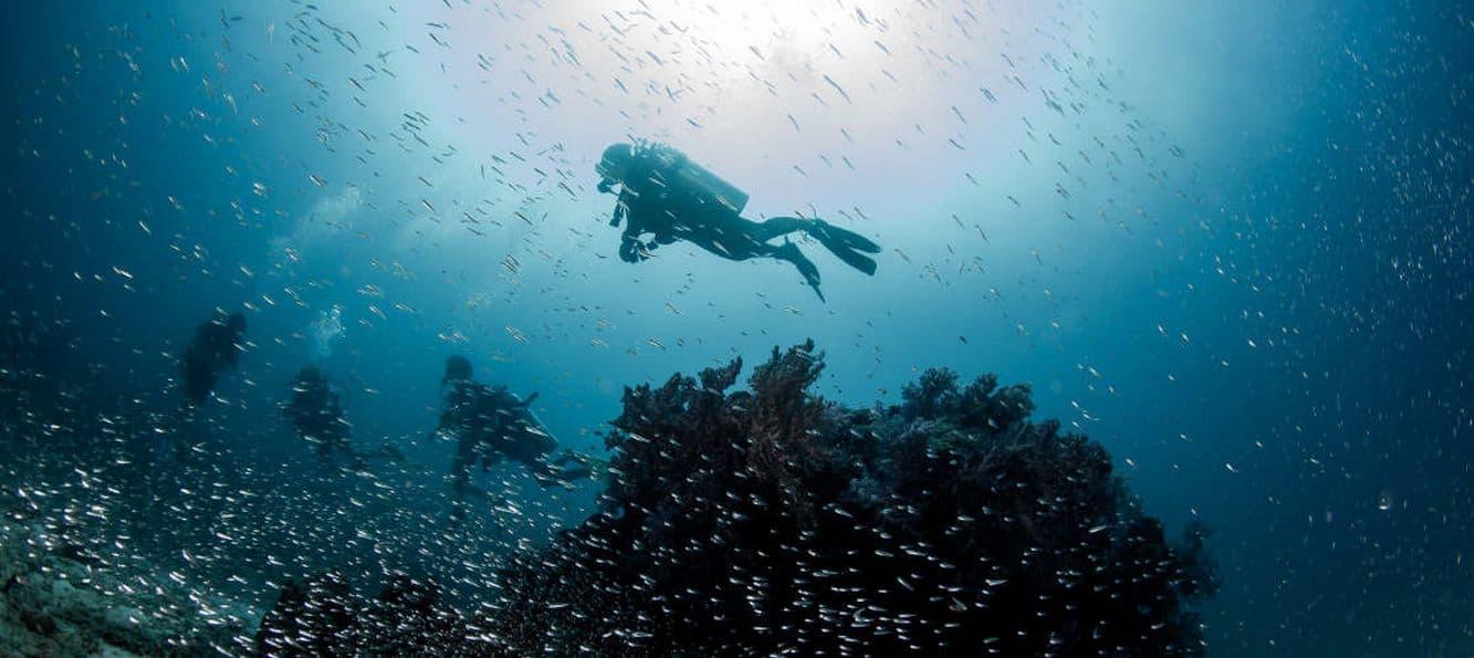 scubadiving 02