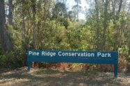 Pine Ridge Conservation Park