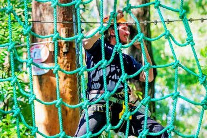 Tree Top Challenge at Currumbin Wildlife Sanctuary 03
