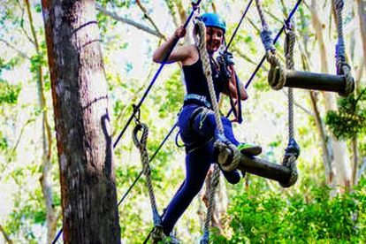Tree Top Challenge at Currumbin Wildlife Sanctuary 04