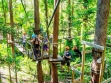 Tree Top Challenge at Currumbin Wildlife Sanctuary 06