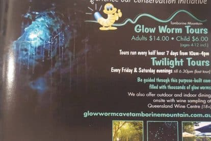 Glow Worm Caves-09