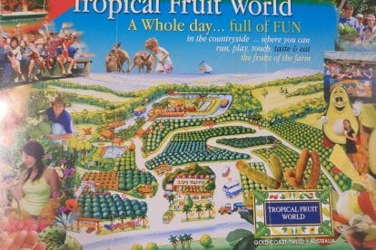 Tropical Fruit World-01