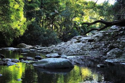 Currumbin Rock Pools 03
