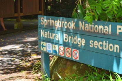 The Springbrook National Park 02